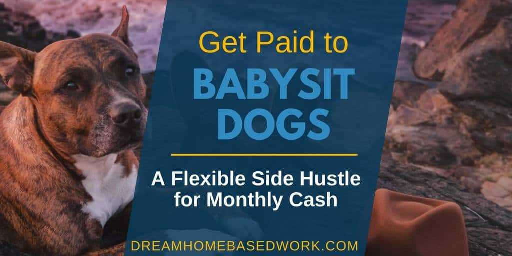 Get Paid With Dog Sitting Jobs: A flexible Side Hustle for ...